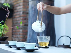 Person's hand pouring green tea into cup