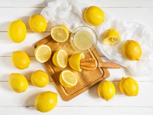 Lemons and citrus squeezer on a wooden background