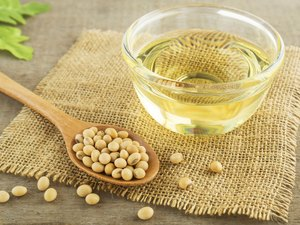 Soybeans and soybean oil on counter