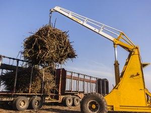 Tractor Truck Crop Loading