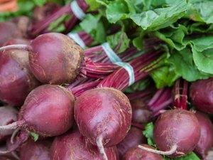 Fine grown beet