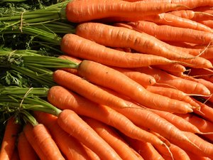 Close-up of carrots