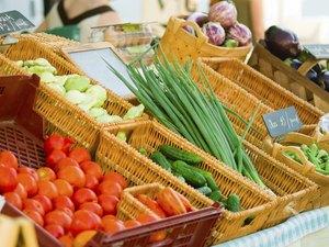 Fresh vegetables for sale