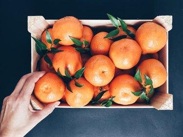 fruit daniel fast