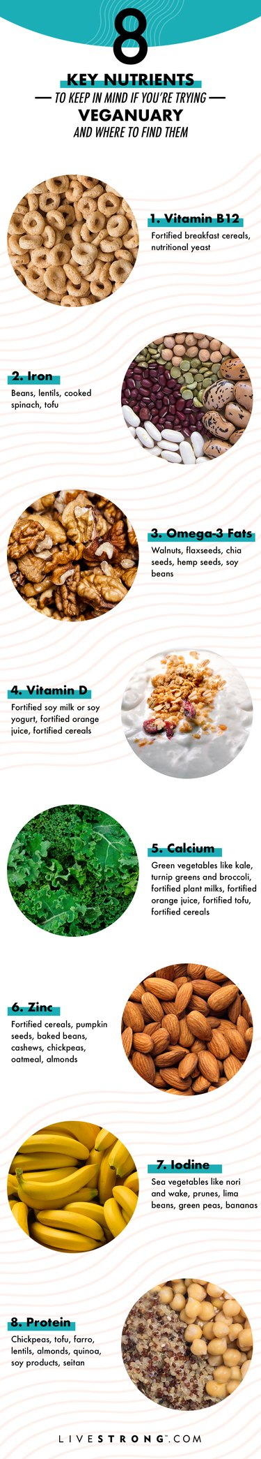 graphic of nutrients important for vegan nutrition