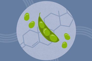 concept illustration of soybeans and chemical structure of hormones