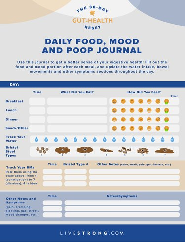 one day color example of LIVESTRONG.com 30-day gut-health reset food, mood and poop journal