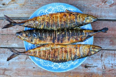 Grilled mackerel on blue plate