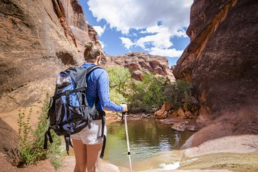 Rear view of a Woman hiking to a waterfall in a red rock canyon
