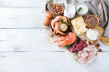 what is protein healthy protein source and body building food