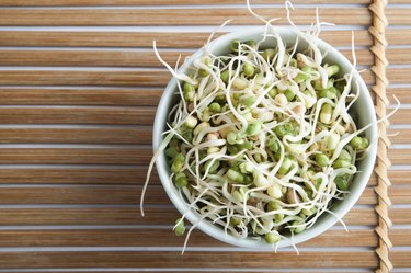 Bowl of Beansprouts Overhead