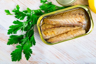 Tasty fillet of mackerel  in sunflower oil in open tin can
