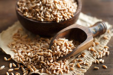 Uncooked whole fiber-rich spelt in a bowl with a wooden spoon