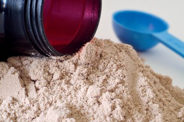 Black shaker in heap of chocolate protein powder