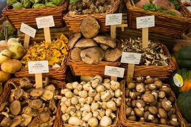 Organic Fresh Mushrooms in Market, New York City