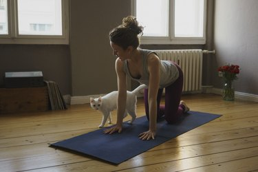 Woman practicing cow pose on exercise mat by cat at home
