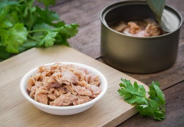 Canned tuna fish in bowl