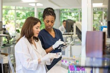 Female Pathologist and Technician Organizing Test Samples