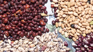 Small piles of colorful dried beans