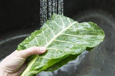 Washing your greens