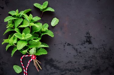 Fresh peppermint in a bunch