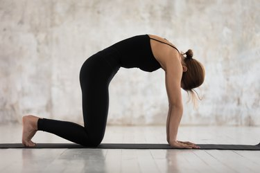 Calm woman practicing yoga, standing in Cat pose, Marjaryasana exercise