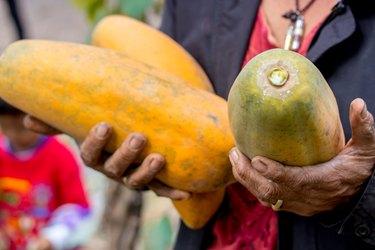 Woman holding papaya,sweet ripe fresh papaya, raw vegan food.