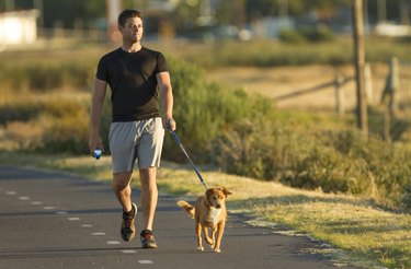 man burning calories walking for an hour with dog