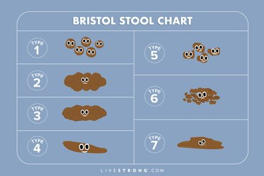 Illustration of Bristol Stool Chart with 7 types of poop