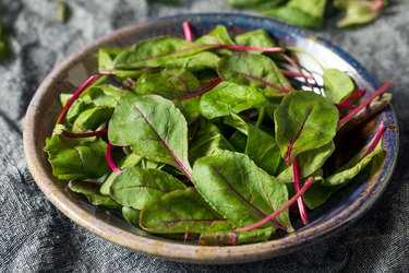 Raw potassium-rich green baby beet greens in shallow bowl