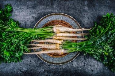 Parsnip. Fresh parsnip. Parsnip with parsley on concrete board.