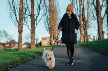 Young Woman Walking Dog In The Park