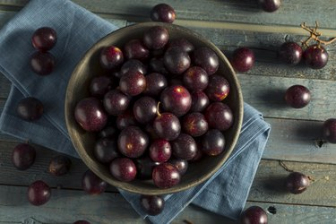 Muscadine Grapes in bowl on counter