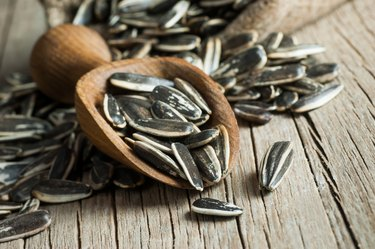 Pile, heap of  roasted sodium-rich sunflower seeds in wooden shovel on wooden table. Composition of sunflower  seeds  serving to make oil. Concept of nuts