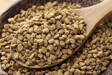 Close view of fenugreek as an herb for weight loss