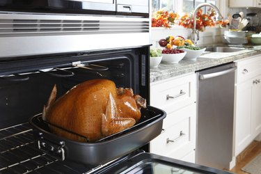 Cooked turkey in the oven in a kitchen