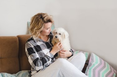 girl playing with her dog sitting at home on the couch
