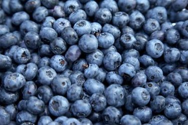 close view of a bushel of blueberries