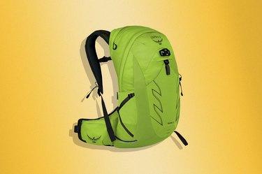 Osprey Talon 22 Hiking Backpack