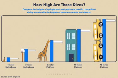 infographic showing chart of heights of various competitive diving platforms compared to everyday objects