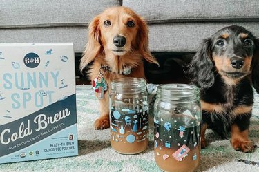 Grounds and Hounds Coffee Co. cold brew with 2 dogs
