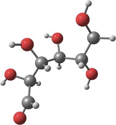 Glucose model