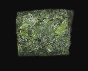 Frozen block of spinach