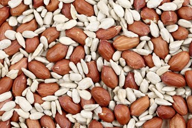Close ip of peanuts and sunflower seeds.