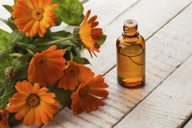 Essential aroma oil from calendula