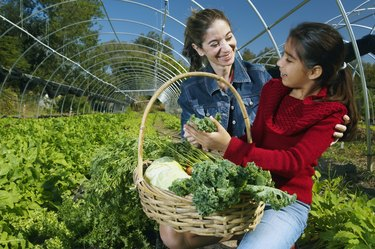 Multi-ethnic mother and daughter harvesting organic produce