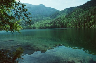 Remote lake in forest, British Columbia, Canada