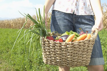 Teenage girl (16-18) holding basket of vegetables, mid section