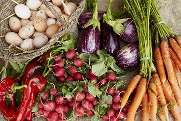 Freshly harvested vegetables at organic farm