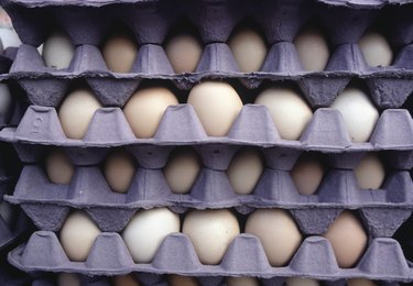 Egg palettes, (Close-up)